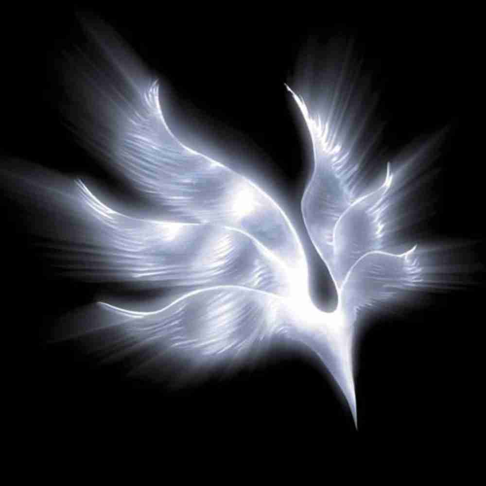 arrows / BUMP OF CHICKEN のジャケット