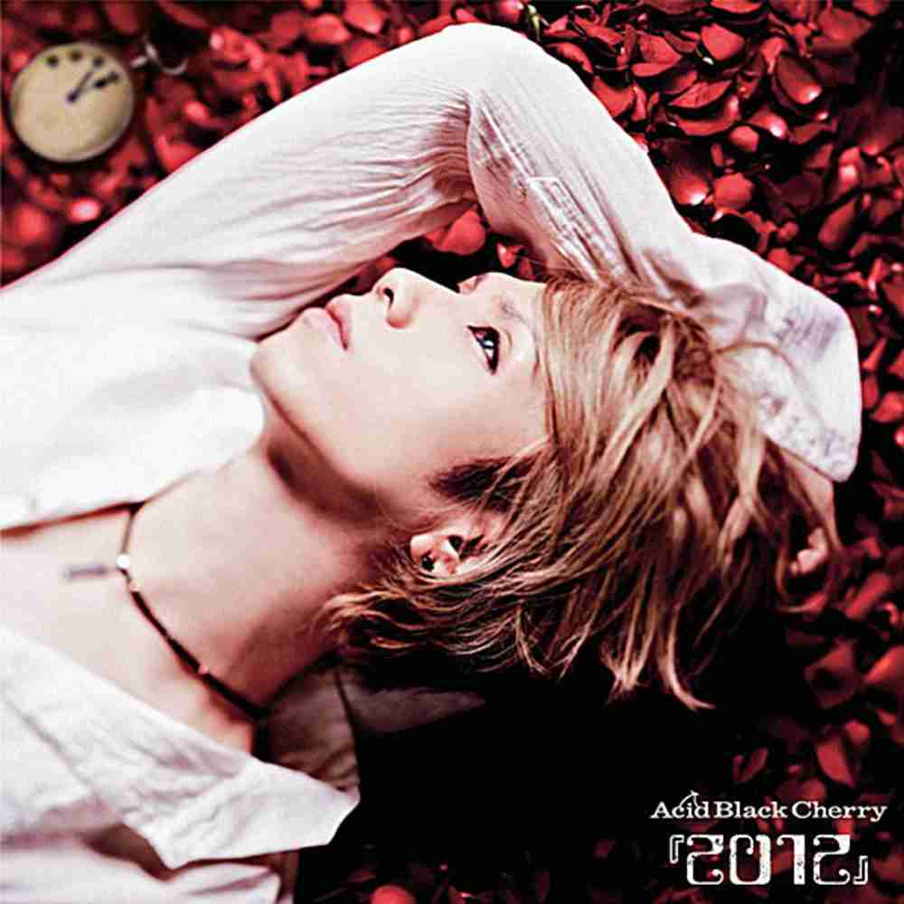 in the Mirror / Acid Black Cherry のジャケット